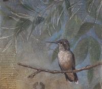 bonnielecat-hummingbird-2010-forweb