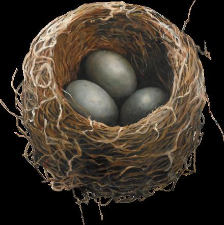 Home-Nest