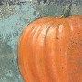 pumpkinwitches-detail-onwhite-bonnielecat
