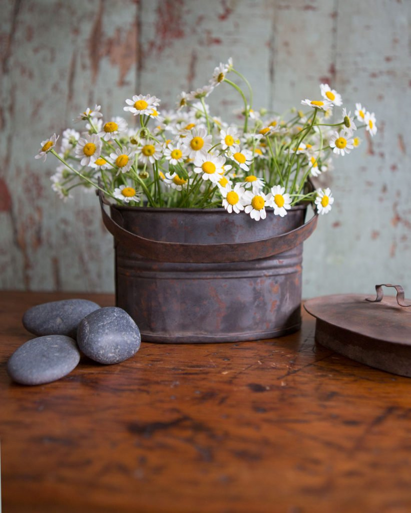 Add some flowers to an old tin for an easy and totally inexpensive rustic accent piece.