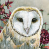 owl-detail