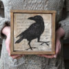 black-crow-12x12-in-barwood-frame
