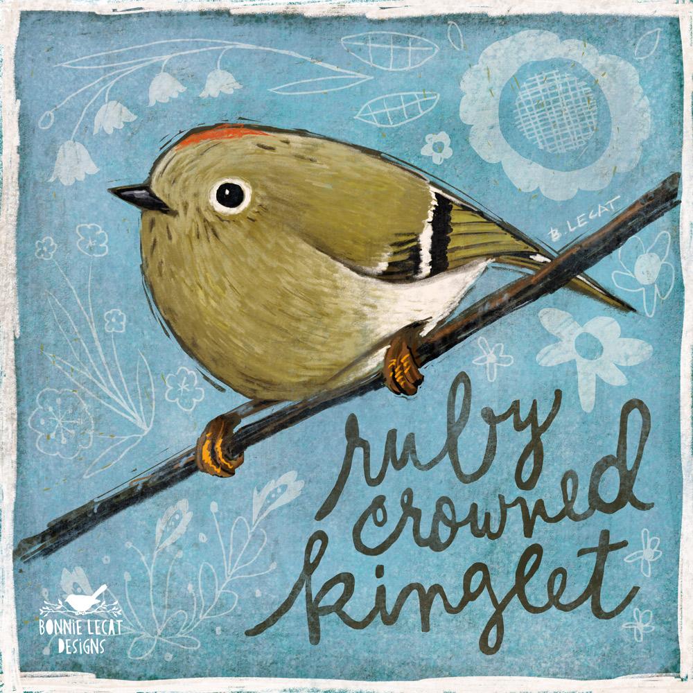 Ruby Crowned Kinglet illustration