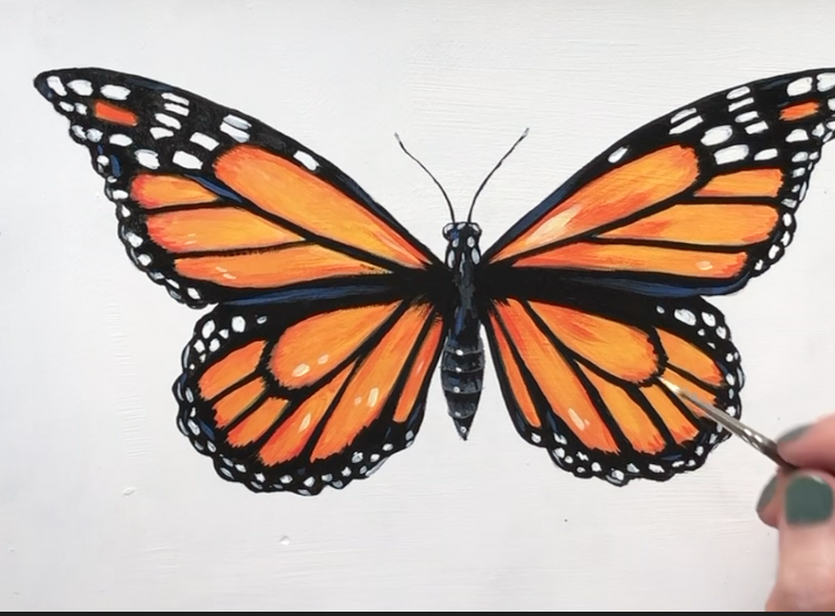 How to paint a butterfly step by step.