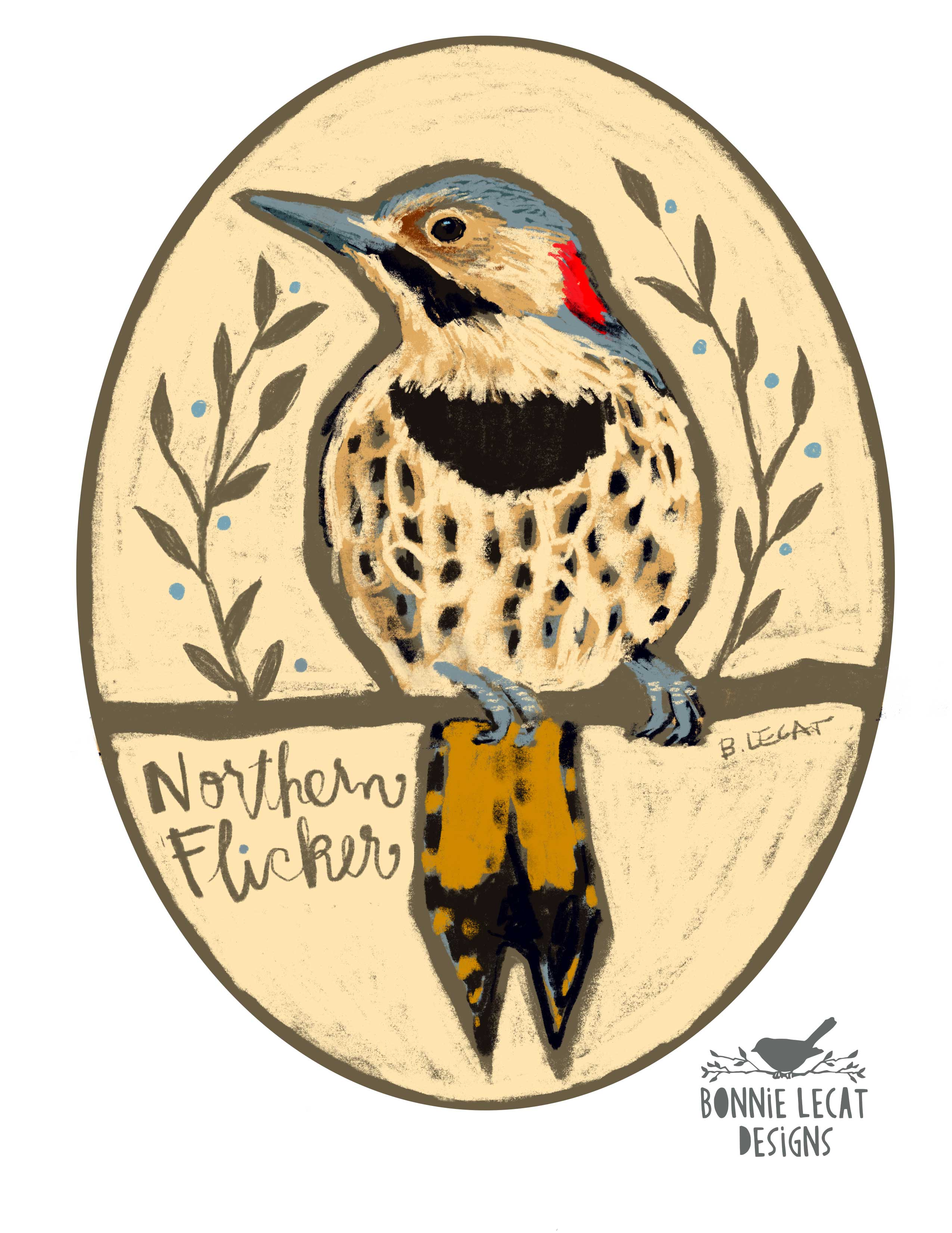 Northern Flicker illustration by Bonnie Lecat