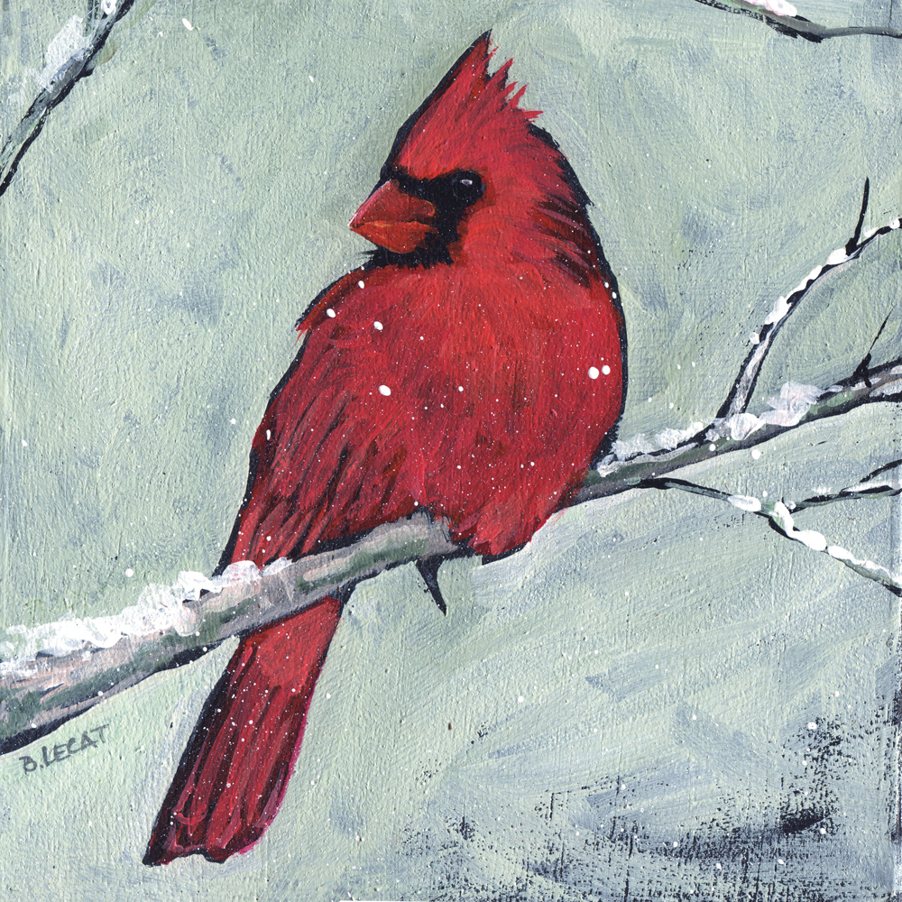 winter-cardinal-2018_web